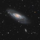 Messier 106 - Widefield,                                Steve Milne