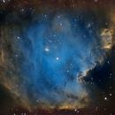 NGC2175,                                Edward Overstreet