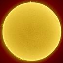 Sun (10/15/2021),                                drivingcat
