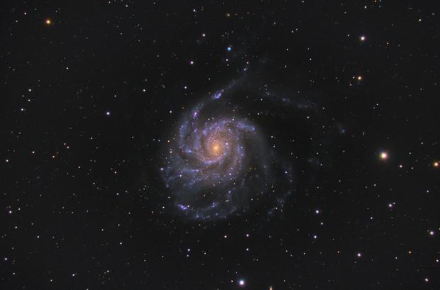 M101,                                Nathan Duso