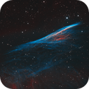 Pencil Nebula (HOO),                                Liangwt