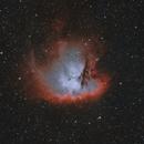 NGC 281 Pacman,                                Scott Homstead