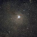 NGC 7023 - Iris Nebula,                                Alexander Weigand