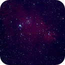 NGC2264,                                Kevin