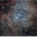 NGC2246,                                Nippo81