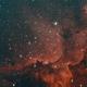Wizard Nebula,                                John Butler