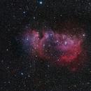 A Christmas baby: IC1848 Soul Nebula,                                Joostie