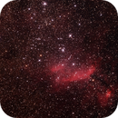 IC4628 - Gum56 - Prawn Nebula in Scorpius ,                                Geoff Scott