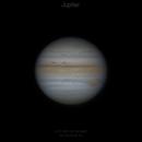 Fresh Jupiter,                                ZYU1917