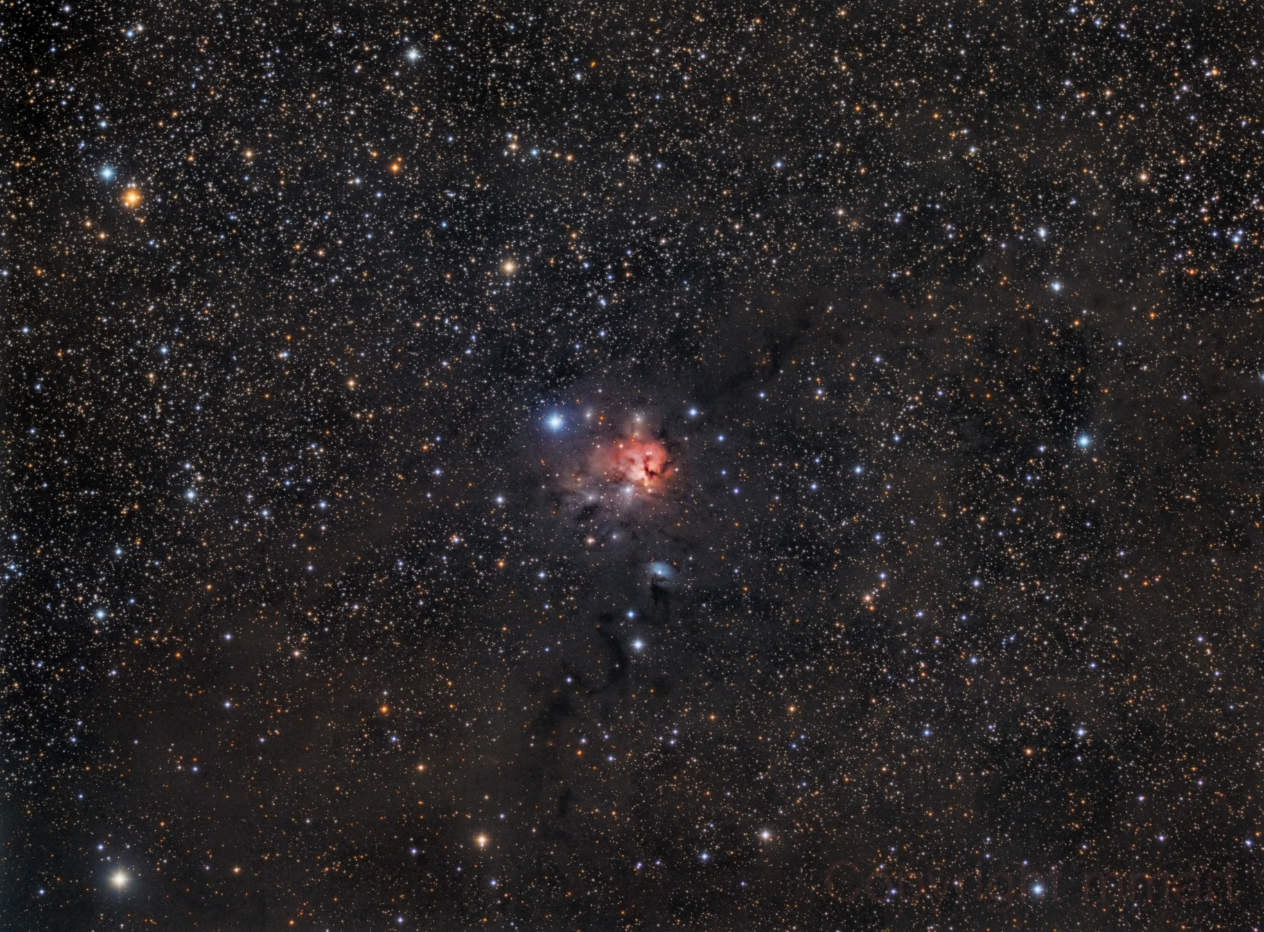 NGC1579 the Trifid of the North,                                Manel Martín Folch
