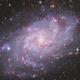 The Triangulum Galaxy - M33,                                Andrew Klinger