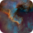 North America Nebula (NGC 7000) Starless Hubble Palette - Two Panel Mosaic,                                Eric Coles (coles44)