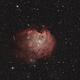 Monkey Head Nebula,                                KiwiAstro