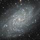 M33 - Triangulum Cropped,                                Trevor Gunderson