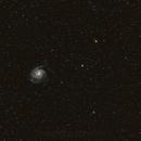 M101 with ST80,                                Dan Phillips