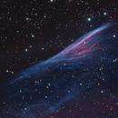 NGC2736 Herschel's Pencil,                                Rolf Dietrich