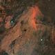 Pelican Nebula (IC 5070),                                Henning Schmidt