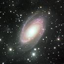 M81,                                ashley