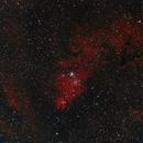 Cone and foxFur nebulas under Bortle 9,                                Dennys_T