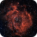 Rosette Nebula 041413,                                jsines