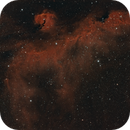 Seagull Nebula,                                James R Potts
