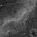 M78/Barnard's Loop/LDN 1622 in Ha,                                Steve Cooper