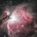 M42 - The Great Orion Nebula,                                Richard Bratt