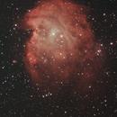 NGC2174 Monkey Head Nebula,                                orfeasv