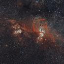 Statue of Liberty Nebula (NGC 3576),                                Christian Vial Arce