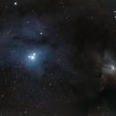 Rho Ophiuchi,                                David Johnson