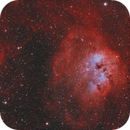 The Tadpole, Spider and Fly Nebula (IC410, SH2-234, SH2-237),                                Nick LaPlaca