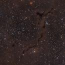 Barnard 150 'The Seahorse Nebula',                                Barry Wilson