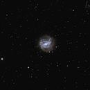 M83,                                jose1960