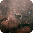 IC1396A, the Elephant's Trunk nebula,                                Oscar Meca