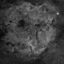 IC1396 en Halpha,                                  Georges