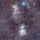 Orion Nebula and Horse Head Nebula,                                FionaMorris6