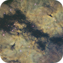 IC 1318 - Butterfly Nebula SHO,                                Mike Hislope