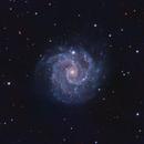 NGC 3184 (UMa) in LRGB - Face-On Round Symmetric Spiral Galaxy,                                Ben Koltenbah