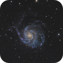 M101: The Pinwheel Galaxy (Ursa Major),                                Toshiya Arai