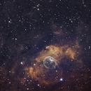 The Bubble Nebula,                                Þorkell Arnar Egilsson