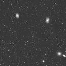 M95 group - luminance only,                    Simon