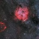 IC1396 - Elephant's Trunk with Sh2-129 - Flying Bat Nebula,                                Jonathan W MacCollum