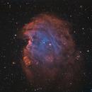 NGC 2174,                                John Leader