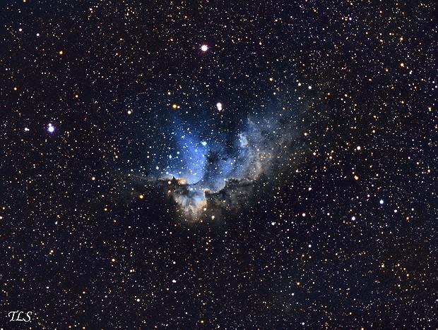 NGC 7380 Wizard Nebula (SHO Palette),                                T L Samuels