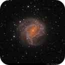 Messier 83 - The Southern Pinwheel Galaxy (drizzle 2x / cropped version),                                Wellerson Lopes