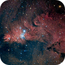 Cone Nebula/Christmas Tree Cluster,                                photoman888