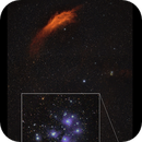 California nebula along with seven sisters - shot in Ha and RGB,                                Sean