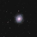 NGC 7217,                                Tim