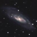 M106 -- Nikon D5300 & Zenithstar 61II,                                Nick Large