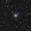 NGC 7217 (Diaz, Alemany, Iovene),                                Salvatore Iovene
